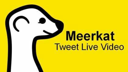 meerkat_logo_live_stream_tweet_video_apple_ios_android_iPhone.jpg
