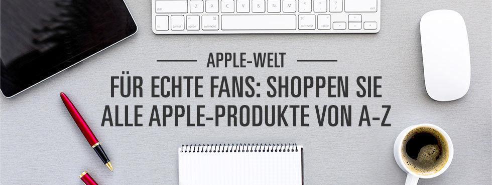 Ebay-Apple-Welt.jpg