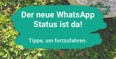 Whatsapp Status Nutzen Und Datenschutz Einstellungen Für