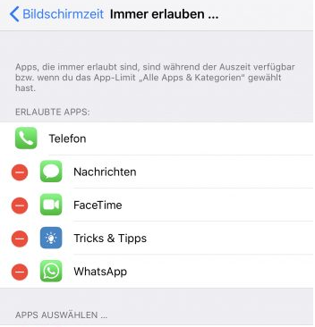 AppleiOS12iPhoneXXsMaxXrBildschirmzeitAppAppsAnwendungAnwendungenSpielSpieleGames-5.png