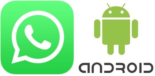 Android Whatsapp Automatisch Auf Sd Karte Speichern.Whatsapp Für Android Bilder Audio Video Und Dokumente Nicht