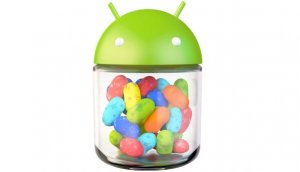 Android-4.1-jelly-bean @ google.jpg